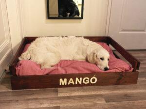 Mangó kutyaágy (100×70)